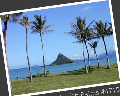 Chinaman's Hat with Palms #4715